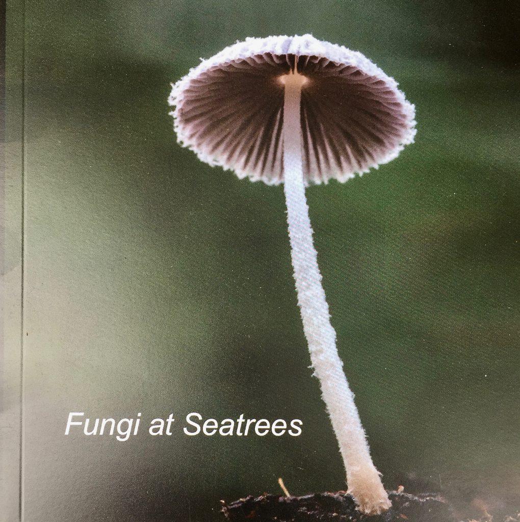 Fungi Book Cover