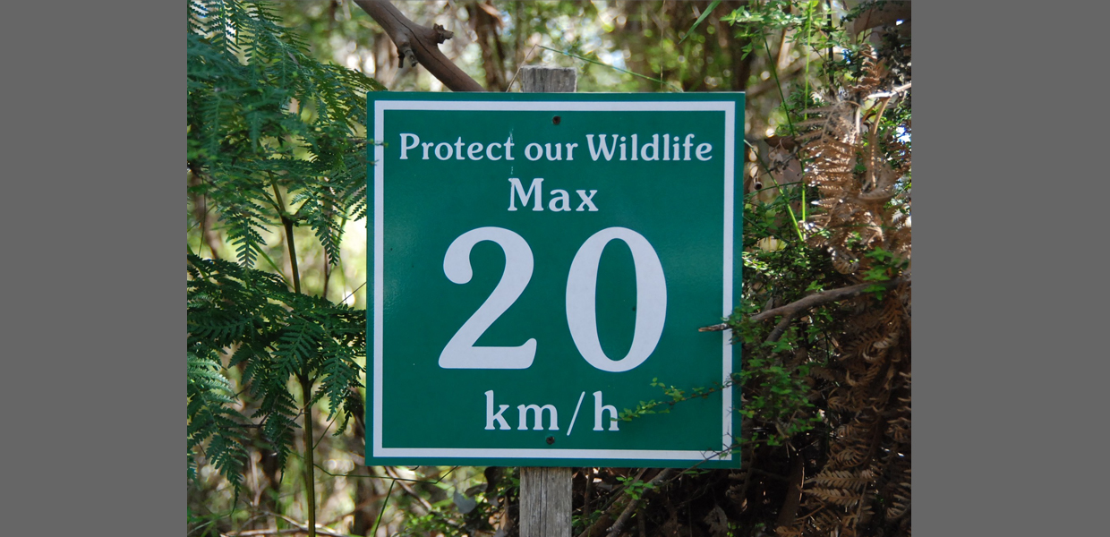 Protect Our Wildlife - Max 20